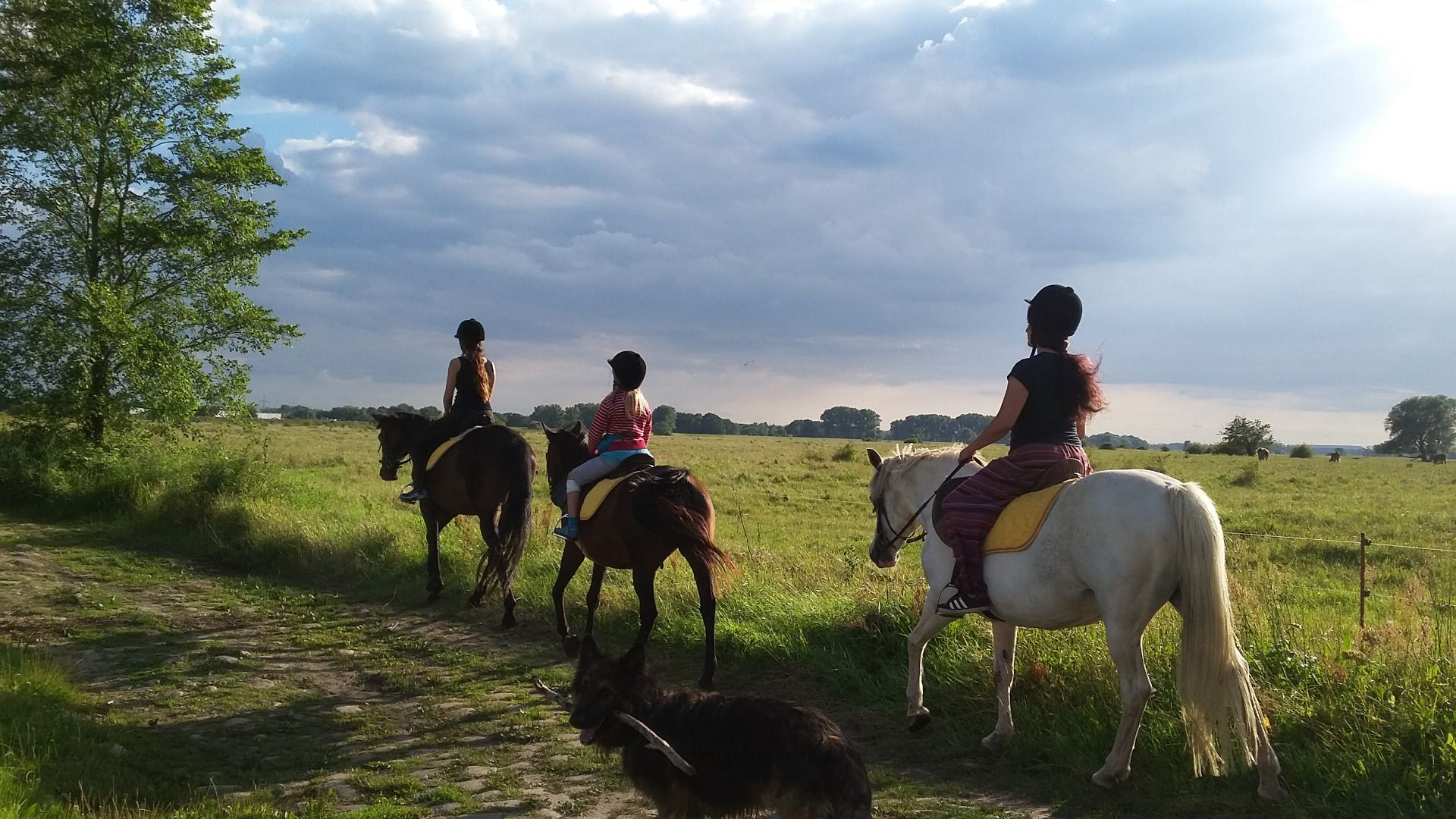 Kinder- Reiterferien Elbschloss Kehnert