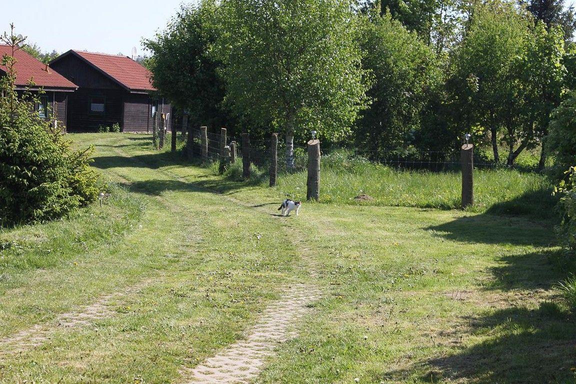 Waldhof Bruchmühle Waldnest 2