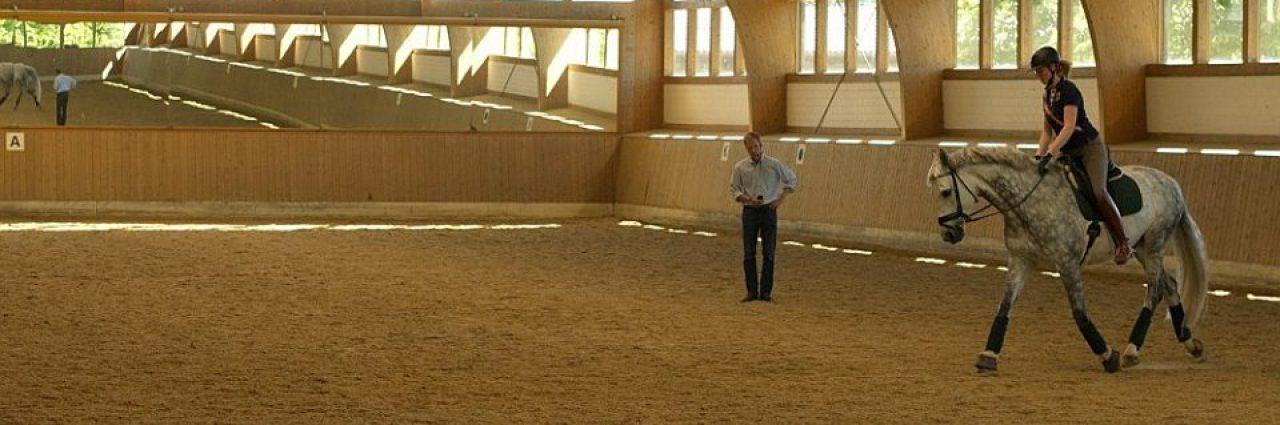 Gästezimmer mit Pferdeboxen in moderner Reitanlage