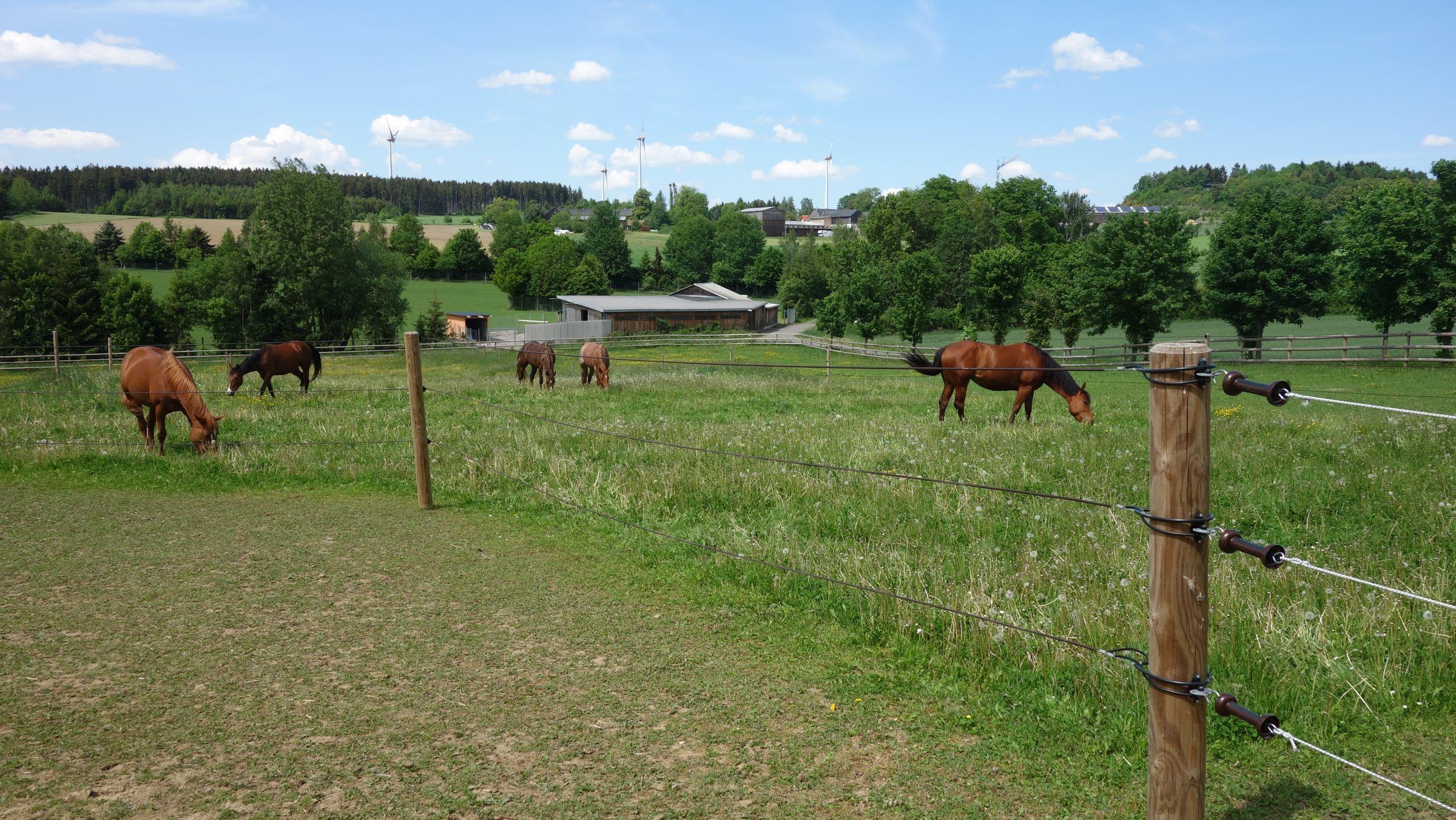 RanchSchooling