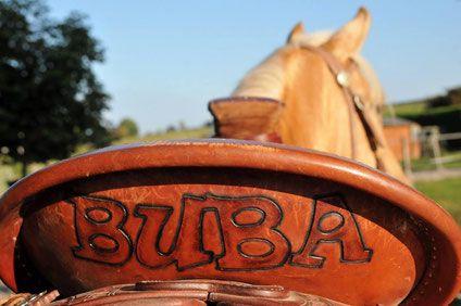 BUBA-Freizeitreiten